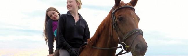 Von Mädchen und Pferden - Queere Wiederaneignung des Pferdemotivs