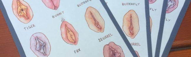 Verlosung: Vulva-Postkarten zu DIE GÖTTLICHE ORDNUNG