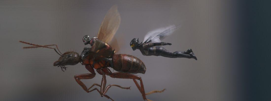 Blockbuster-Check: Ant-Man and the Wasp